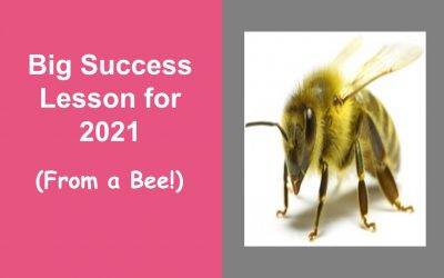 Big Success Lesson for 2021 (From a Bee!)